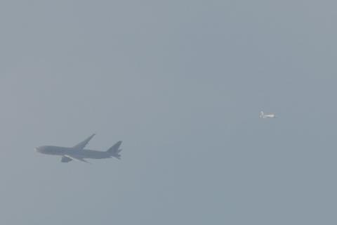 815_012.jpg